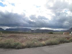 Photo of 1718 S Thompson Drive, Lot 29, Superior, AZ 85173 (MLS # 5915091)
