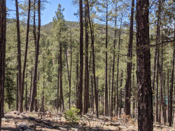 Photo of 28 Wipila Wiki Drive, Lot 28, Christopher Creek, AZ 85541 (MLS # 5921768)