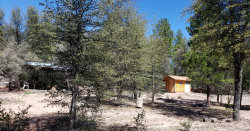 Photo of 244 N Rifle Barrel Road, Lot 51, Young, AZ 85554 (MLS # 5921876)