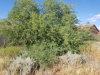 Photo of 11090 W Penasco Drive, Lot 308, Arizona City, AZ 85123 (MLS # 5926156)