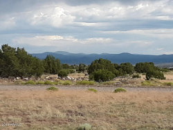 Photo of Lot #112 Windsor Valley Ranch --, Lot 112, Concho, AZ 85924 (MLS # 5944129)