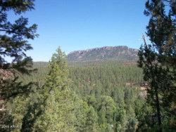 Photo of 136 S Hunter Creek Drive, Lot 0, Christopher Creek, AZ 85541 (MLS # 5957596)