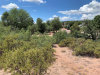 Photo of 509 N Blue Spruce Road, Lot 199, Payson, AZ 85541 (MLS # 5960600)