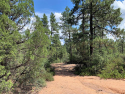 Photo of 192 E Saddleback Trail, Lot 38, Star Valley, AZ 85541 (MLS # 5962271)