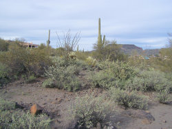 Photo of 49814 N 25th Avenue, Lot -, New River, AZ 85087 (MLS # 5969030)
