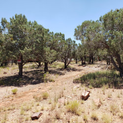 Photo of 2903 W Nicklaus Drive, Lot 210, Payson, AZ 85541 (MLS # 5969557)