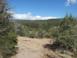 Photo of 13 W Elk Song Trail, Lot 13, Young, AZ 85554 (MLS # 5978748)