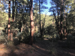 Photo of 1 S Fred's Road, Lot 001L, Young, AZ 85554 (MLS # 6000235)