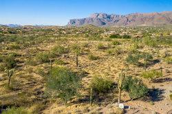 Photo of 4782 S Pura Vida Way, Lot 1, Gold Canyon, AZ 85118 (MLS # 6000624)