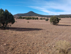 Photo of 150 S Dutchman Trail, Lot 130, Young, AZ 85554 (MLS # 6003270)