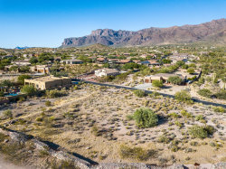 Photo of 10631 E Walking Stick Way, Lot 22, Gold Canyon, AZ 85118 (MLS # 6003346)