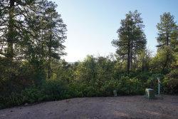 Photo of 602 N Trailhead Drive, Lot 13, Payson, AZ 85541 (MLS # 6021360)