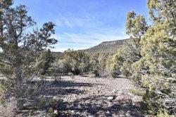Photo of 1177 Serenity Trail, Lot 1177, Seligman, AZ 86337 (MLS # 6025982)