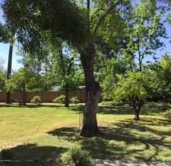 Photo of 205 E Griswold Road, Lot 4, Phoenix, AZ 85020 (MLS # 6026130)
