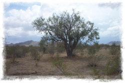 Photo of 18749 S Victoria Street, Lot 2, Goodyear, AZ 85338 (MLS # 6026765)