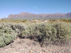 Photo of 6642 E Old Camp Road, Lot 23, Gold Canyon, AZ 85118 (MLS # 6027056)