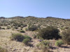 Photo of 6579 E Old Camp Road, Lot 17, Gold Canyon, AZ 85118 (MLS # 6027067)