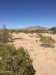 Photo of 56854 W Chili Pepper Road, Lot -, Maricopa, AZ 85139 (MLS # 6027070)