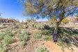 Photo of 10746 E Calle Del Cascabel --, Lot 21, Gold Canyon, AZ 85118 (MLS # 6040246)