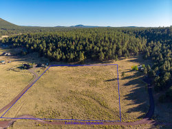 Photo of 9635 W Antoinette Way, Lot -, Flagstaff, AZ 86001 (MLS # 6040505)