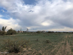 Photo of 19221 W Flower Street, Lot E, Litchfield Park, AZ 85340 (MLS # 6057080)
