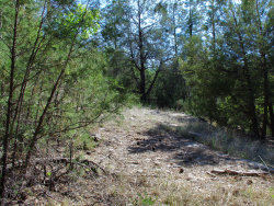 Photo of 3054 N Neal Drive, Lot 4, Payson, AZ 85541 (MLS # 6083085)