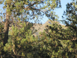 Photo of Lot 25K Verde Glen --, Lot -, Payson, AZ 85541 (MLS # 6100588)