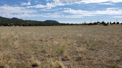 Photo of 200 N Seeley Drive, Lot 3, Young, AZ 85554 (MLS # 6103736)