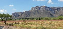 Photo of 2799 S Petroglyph Trail, Lot 68, Gold Canyon, AZ 85118 (MLS # 6118097)