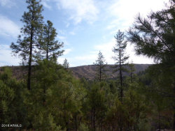 Photo of 885 E Forest Svc Rd 512 --, Lot B, Young, AZ 85554 (MLS # 6146683)