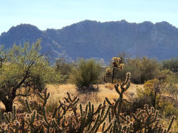 Photo of 0 E Carefree Highway --, Lot 4, Scottsdale, AZ 85262 (MLS # 6152303)