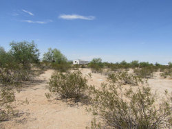 Photo of 51212 W Sotol Road, Maricopa, AZ 85139 (MLS # 5512119)