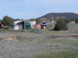 Photo of 236 S Elk Ridge Road, Young, AZ 85554 (MLS # 5585704)