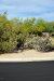 Photo of 4752 E Laredo Lane, Cave Creek, AZ 85331 (MLS # 5600760)