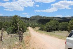 Photo of 530 E Neaglin Crossing, Young, AZ 85554 (MLS # 5615982)