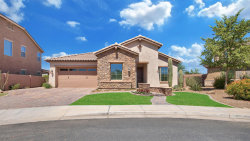 Photo of 4024 S Camellia Drive, Chandler, AZ 85248 (MLS # 5622184)