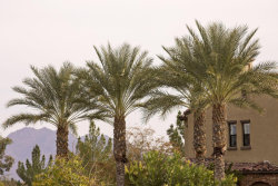 Photo of 4777 S Fulton Ranch Boulevard, Unit 2128, Chandler, AZ 85248 (MLS # 5635407)