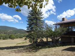 Photo of 180 W Turner Hill Road, Young, AZ 85554 (MLS # 5677089)