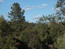 Photo of 617 N Grapevine Drive, Payson, AZ 85541 (MLS # 5691306)