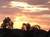 Photo of 4017 W Chisum Trail, Phoenix, AZ 85083 (MLS # 5737341)