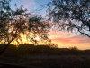 Photo of 2054 W Roy Rogers Road, Phoenix, AZ 85085 (MLS # 5740707)