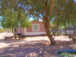 Photo of 24215 E Logan Boulevard, Florence, AZ 85132 (MLS # 5753873)