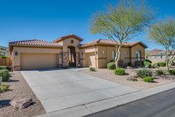 Photo of 8531 E Twisted Leaf Drive, Gold Canyon, AZ 85118 (MLS # 5766938)