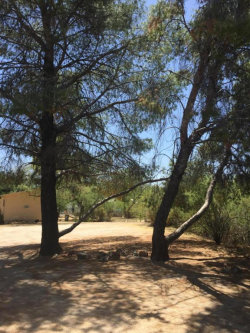 Photo of 757 N Oleander Street, Wickenburg, AZ 85390 (MLS # 5768239)