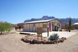 Photo of 5136 E 10th Avenue, Apache Junction, AZ 85119 (MLS # 5782161)