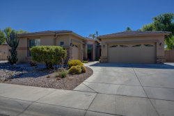 Photo of 4617 S Buckskin Way, Chandler, AZ 85249 (MLS # 5783988)