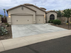 Photo of 867 S Del Rio Court, Apache Junction, AZ 85120 (MLS # 5793831)