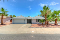 Photo of 11245 S Tomi Drive, Phoenix, AZ 85044 (MLS # 5796902)