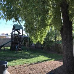 Photo of 2247 W Palo Verde Drive, Phoenix, AZ 85015 (MLS # 5824034)