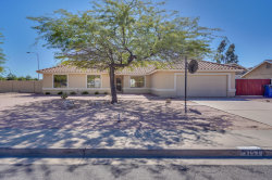 Photo of 3153 E Leonora Street, Mesa, AZ 85213 (MLS # 5836176)